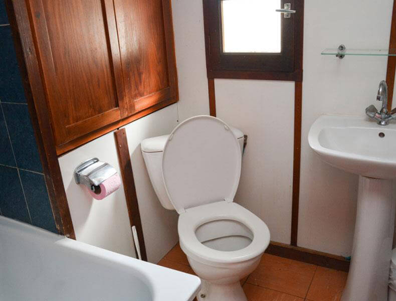 Bathroom Toilets Camarguaise hut rental for 2/4 people