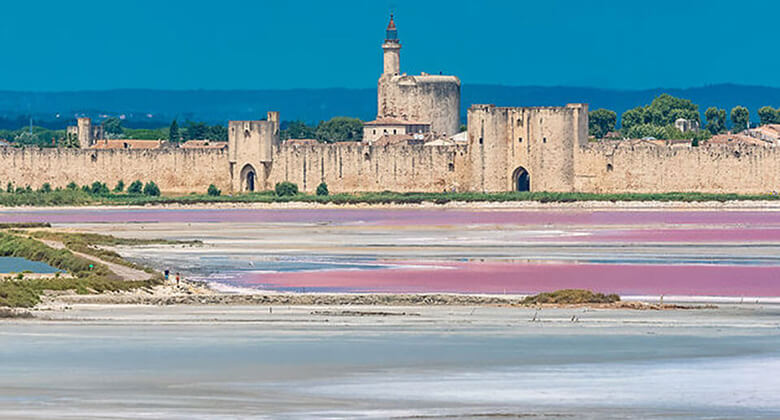 Aigues-Mortes in the little Camargue